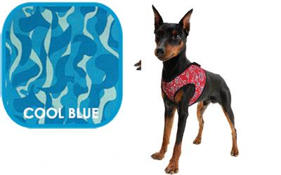 Aqua Coolkeeper Cooling Comfy Hundegeschirr, cool blau
