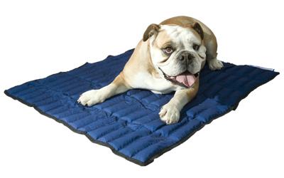 Aqua Coolkeeper Cooling Mat Hundematte, pacific blau