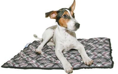 Für Kurz- und Langhaarhunde einsetzbar