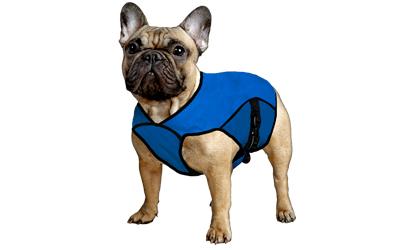 Aqua Coolkeeper Cooling Pet Jacket Kühljacke, pacific blau
