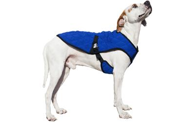 Kühlweste auch auf große, schmale Hunde anpaßbar