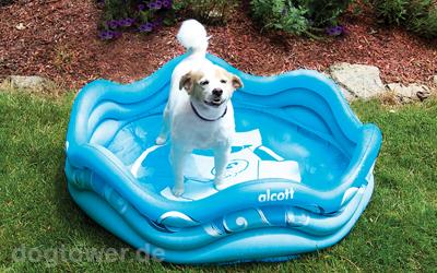 Aufblasbares Hundeschwimmbecken