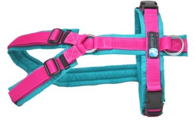 annyX Brustgeschirr Fun (Sonderfarbe), petrol/pink