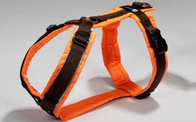 annyX Brustgeschirr Protect, leuchtorange/braun