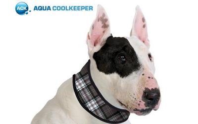Aqua Coolkeeper Cooling Collar Hundehalsband, scottish grey
