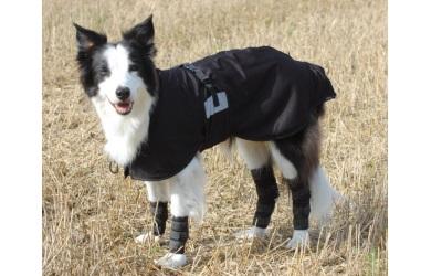 Back on Track Hundegelenkschoner
