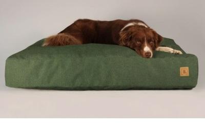 Buddy.Pets Buddy.Bett grün
