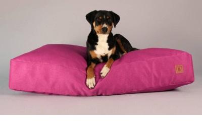 Buddy.Pets Buddy.Bett pink