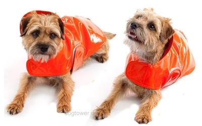 Canine Styles Regenjacke Classic, orange