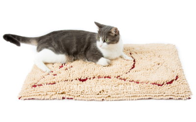 Dog Gone Smart Dirty Cat Doormat Braun