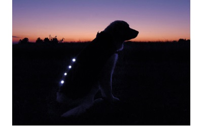 Leucht-Winterjacke im Dunkeln