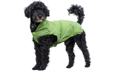 DogBite Winterjacke, grün
