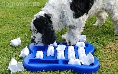 Dog Finder Kunststoff