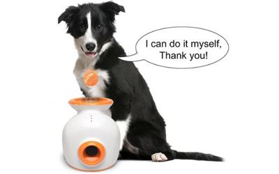 Kann Ihr Hund die Wurfmaschine selbst befüllen