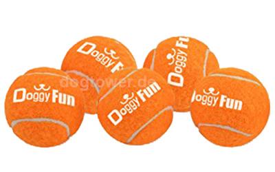 5er Set Tennisbälle zum Spielen