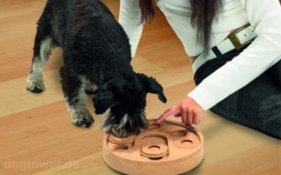 Intelligentes Hundespielzeug für kleine und große Hunde