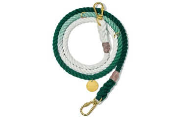 Found My Animal Teal Ombre Cotton Rope verstellbare Hundeleine