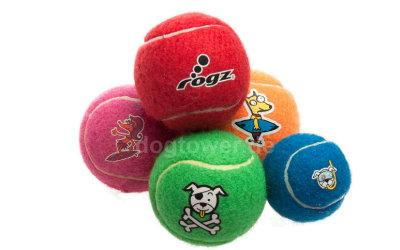 Hunde- Tennisball