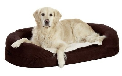 Hunde- Liegebett Ortho Bed, oval, braun