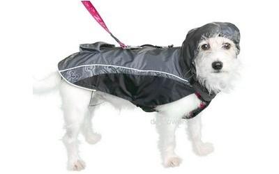 Hundejacke Rain Skin im Einsatz in schwarz