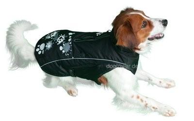 Hundemantel SnowSkin im Einsatz