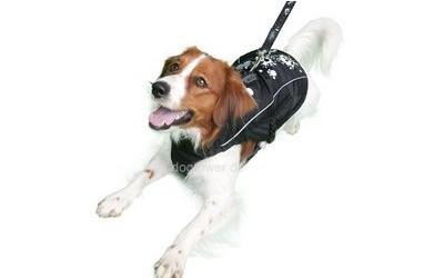 Warmer Hundemantel mit Wattierung
