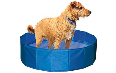 Hundepool, blau
