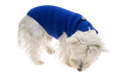 Hundepullover weich und anschmiegsam