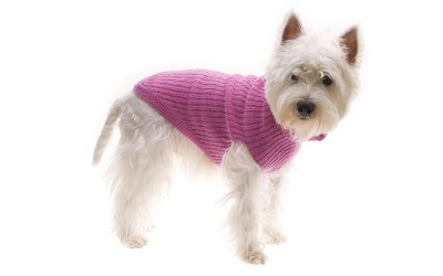 Hundepullover, pink aus Wolle