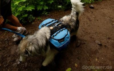 Approach pack, Rucksack für Hunde