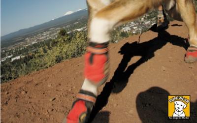 Hundeschuhe Grip Trex mit Profil