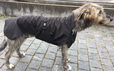 IQO VX Hundemantel, schwarz
