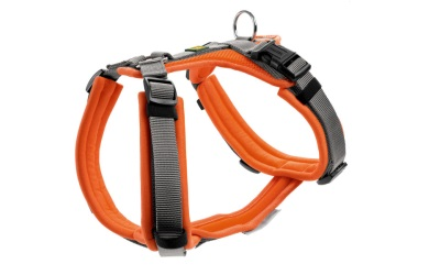 Hunter Geschirr Maldon, orange/grau