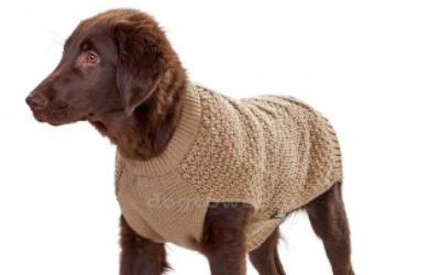 Warmer Schutz für Hunde mit einer Rückenlänge von 25-50cm