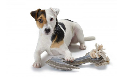 Hunter Hundespielzeug Canvas Maritime Anchor