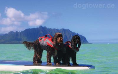 Hunter Schwimmweste für mehr Sicherheit im Wasser