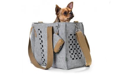Stylischer und sicherer Transport für Ihren kleinen Hund bis 7kg