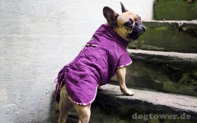 Ideale Hundejacke für kurzhaar und bullige Hunde