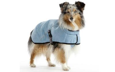 Hurtta Kühlweste für kleine und große Hunde einsetzbar