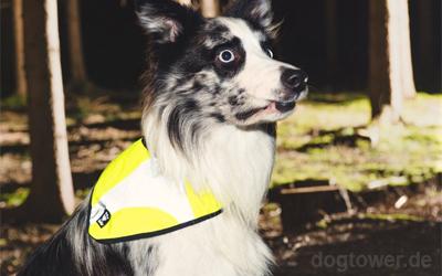 Hundehalstuch von Hurtta, einfach und schnell anzulegen