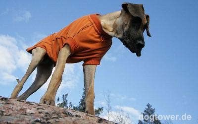 High Tech Fleece Jacken, orange