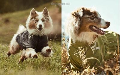 Hundejacke Frost Jacket