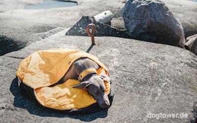 Folienfläche auf der Schlafsackinnenseite reflektiert die Körperwärme des Hundes