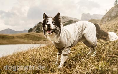 Sunblocker und Insketenschutz für Hunde