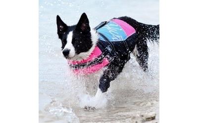 Alternativ: Schwimmweste in ocean/pink
