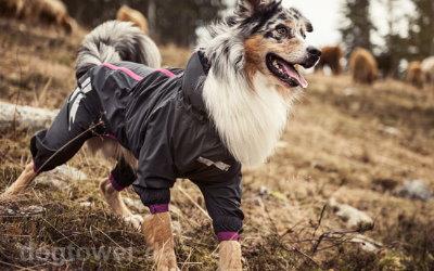 Ideal für langhaarige Hunde