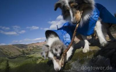 Hundejacke individuell einstellbar