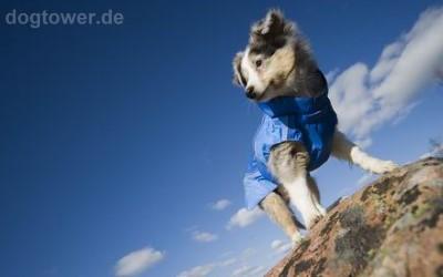 Outdoorjacke für Hunde