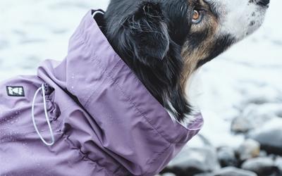 Optimaler Schutz bei Wind und Regen