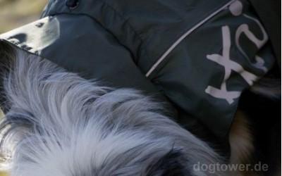 Hundejacke mit Kragen